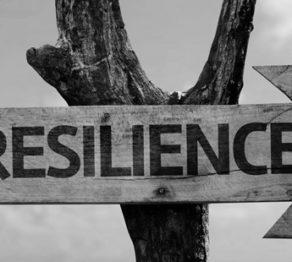 resiliencia-como-ser-resiliente-alphalife-coach