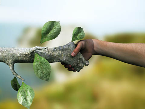 CNseg anuncia relatório setorial de sustentabilidade