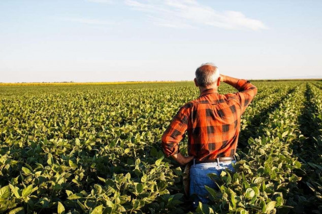 Ministra discute fortalecimento do Seguro Rural com seguradoras