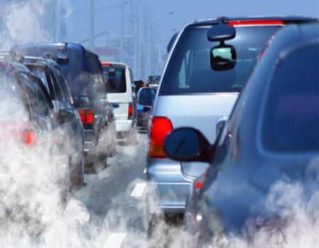 Seguro compensa emissões de CO2 do automóvel por um ano