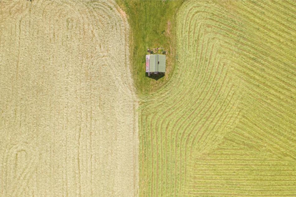 Comissão do Sincor-SP destaca oportunidades do agronegócio