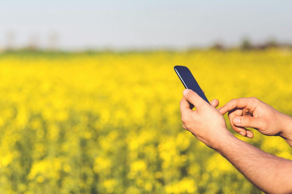 Seleção de profissionais no agro gera oportunidades mesmo em meio à crise