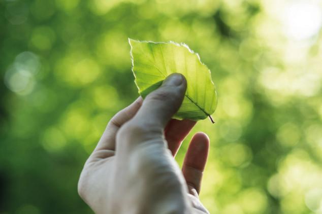 SulAmérica integra novamente índice de sustentabilidade FTSE4Good